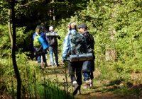Magische Bos-Bomen-dag vr. 28 mei